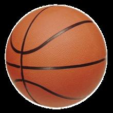220px-Basketball copy