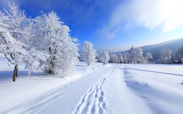 rabstol net winter 30